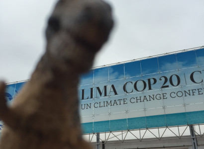 Rex at the first day of COP20 in Peru