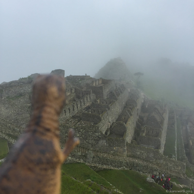 In the early morning mist, Rex looks over the spectacular sight of Machu Picchu, one of the Seven Wonders of the World