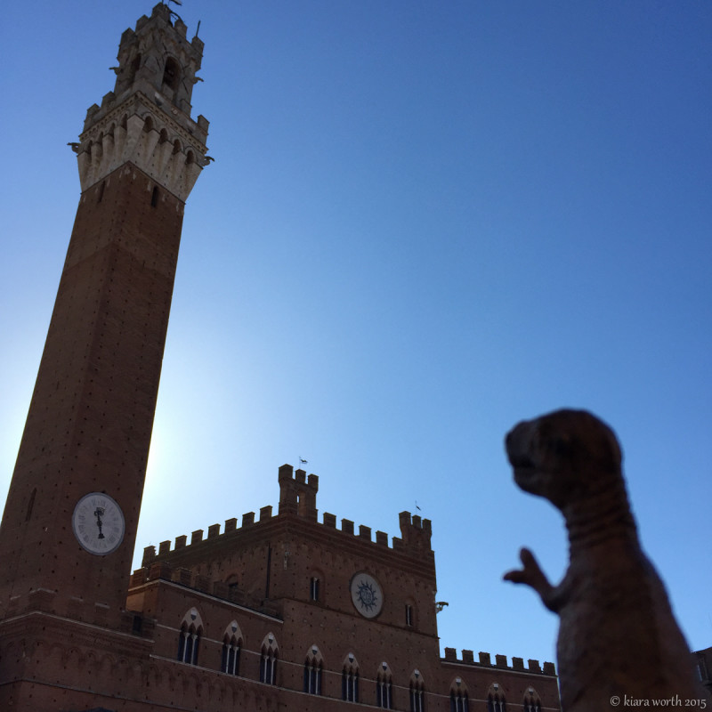 Rex stands in awe at the Piazza del Campo, the central square in Siena, Tuscany, regarded as one of Europe