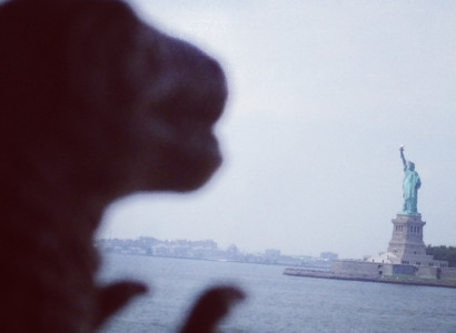 Rex sees the Statue of Liberty