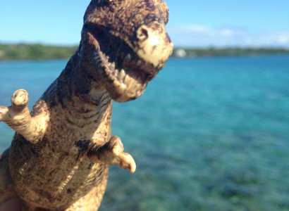 Rex poses in front of the azure waters at the Va-i-moana Seaside Lodge, relishing in the tropical paradise of Savai